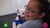 Глухая девочка обучила глухого щенка командам на языке жестов (ВИДЕО)