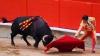 Бык убил тореадора в Испании впервые за 30 лет