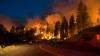 Пожар в заповеднике штата Нью-Мексико угрожает редким видам животных и птиц