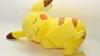 Поклонник Pokemon GO перекрасил свою собаку под Пикачу (ВИДЕО)