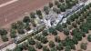 Число жертв столкновения поездов в Италии выросло до 20