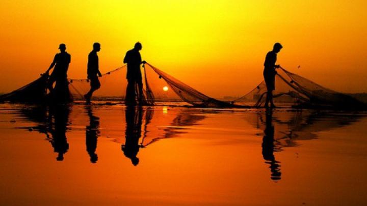 Французские рыбаки поймали в сети португальскую военную подлодку