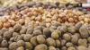 Ливан: крупную партию амфетаминов замаскировали под картофель