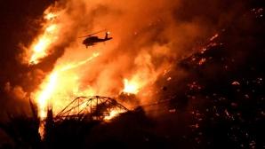 Более 35 тысяч домов остались в Калифорнии без хозяев из-за пожара