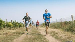 150 человек пробежались среди виноградников на юге Молдовы