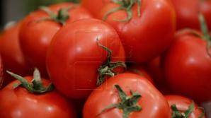 Жительница столицы купила томаты с неприятным сюрпризом