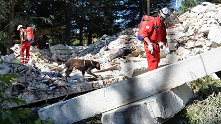 Число жертв землетрясения в Италии увеличилось до 250 человек