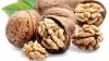 В Молдове начался сбор урожая орехов