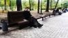 Киевляне в сети обсуждают священника с iPhone 7 (ФОТО)