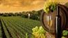 В молдавских селах наступила пора приготовления домашнего вина