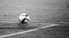 Сборная Молдовы по футболу крупно проиграла Уэльсу