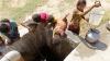 В городе Ходейда более ста тысяч детей страдают от недоедания