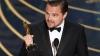 "Леонардо Ди Каприо заподозрили во владении украденным ""Оскаром"" Марлона Брандо"