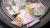 """""""Ландромат"""": деньги отмывали через ряд российских фирм и офшорных компаний"""