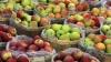 Национальный фестиваль яблока прошел в Сороках