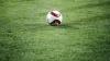 Ведущие футболисты сборной Молдовы набрали отличную форму