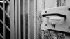 Экс-сотрудника бричанского Бюро тестирования приговорили к тюрьме