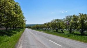 В оргеевском микрорайоне Лупоайка завершился комплекс работ по восстановлению дорог