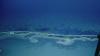 В США обнаружили странное «озеро смерти»