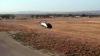 В сети появилось видео: первый беспилотный полёт израильского летающего такси