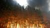 В американском штате Теннеси бушуют лесные пожары