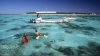 Третий за неделю турист погиб в районе Большого Барьерного рифа