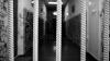 Прокуратура отправила в суд дело об убийстве бывшего муниципального советника Комрата