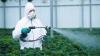Для приобретения пестицидов производителям сельхозпродукции понадобится лицензия