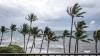 На Мир обрушилась череда бедствий: пожары, ураганы и проливные дожди
