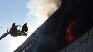 Publika TV будет транслировать брифинг СЧС о пожаре на Чеканах в прямом эфире в 11:30