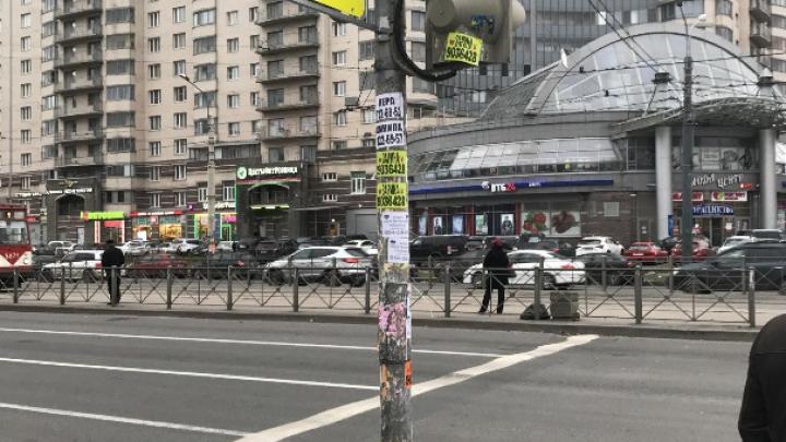 Чиновники Петербурга отчитались о работе с помощью Paint
