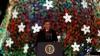 Супруги Обама зажгли огни на ёлке у Белого дома