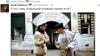 МИД РФ требует от Украины объяснить «веселые картинки» про «Боярышник»