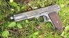 В фермера из Рышканского района выстрелили девять раз из его же пистолета