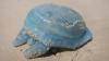 Австралиец принял медузу за силиконовый имплантат из груди погибшей женщины
