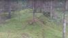 Поймать на живца! Как литовец решил привлечь внимание дикой лисы