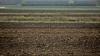 Фермеры: в этом году сезонные работы затянулись
