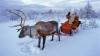 Пятеро граждан Молдовы решили отвезти в Лапландию письма детей для Санта-Клауса