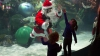 В Лас-Вегасе тысячи Санта-Клаусов приняли участие в благотворительном марафоне