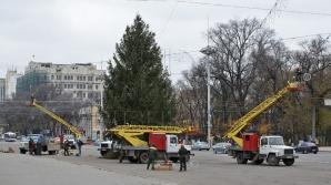 Сегодня вечером в столице зажгут главную новогоднюю ёлку страны