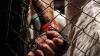 Eagles Fighting Championship: Вместо Луки Поклита, на ринг выйдет Василий Ботнару