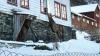 В Норвегии олень ежедневно навещает семью в знак благодарности за спасение
