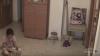 Сеть шокировало видео с ожившей куклой и движущейся мебелью