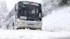 Автобус с нашими соотечественниками застрял на дороге в Румынии