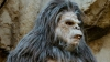 DailyMail: В Йеллоустоуне сняли на видео семью йети