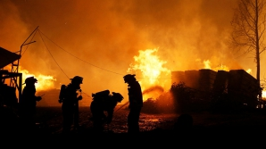 В Чили из-за крупнейших в истории пожаров погибли 11 человек