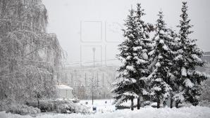 Морозы возвращаются в Молдову