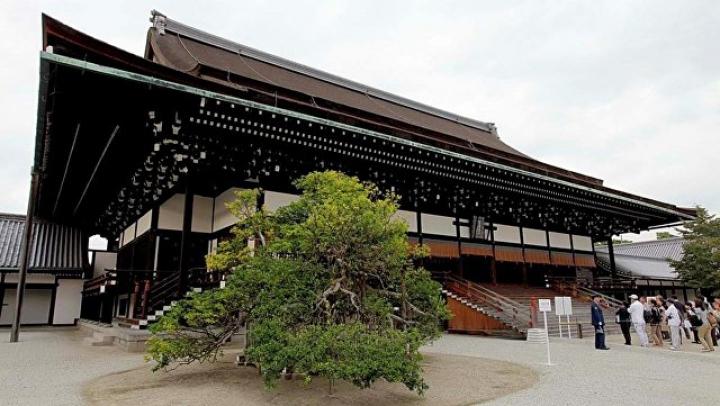 В Японии сто тысяч человек пришли ко дворцу монарха услышать поздравление