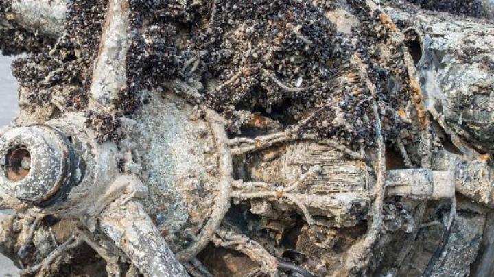Установлены личности экипажа борта времён ВОВ, найденного в зоне крушения Ту-154