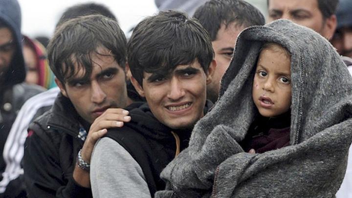 """Страница """"Мифы и факты о беженцах"""" исчезла с сайта Госдепа США"""